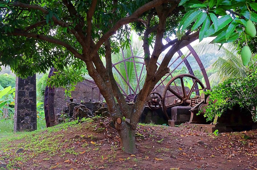 historical plantation water wheel atv farm and eco tours