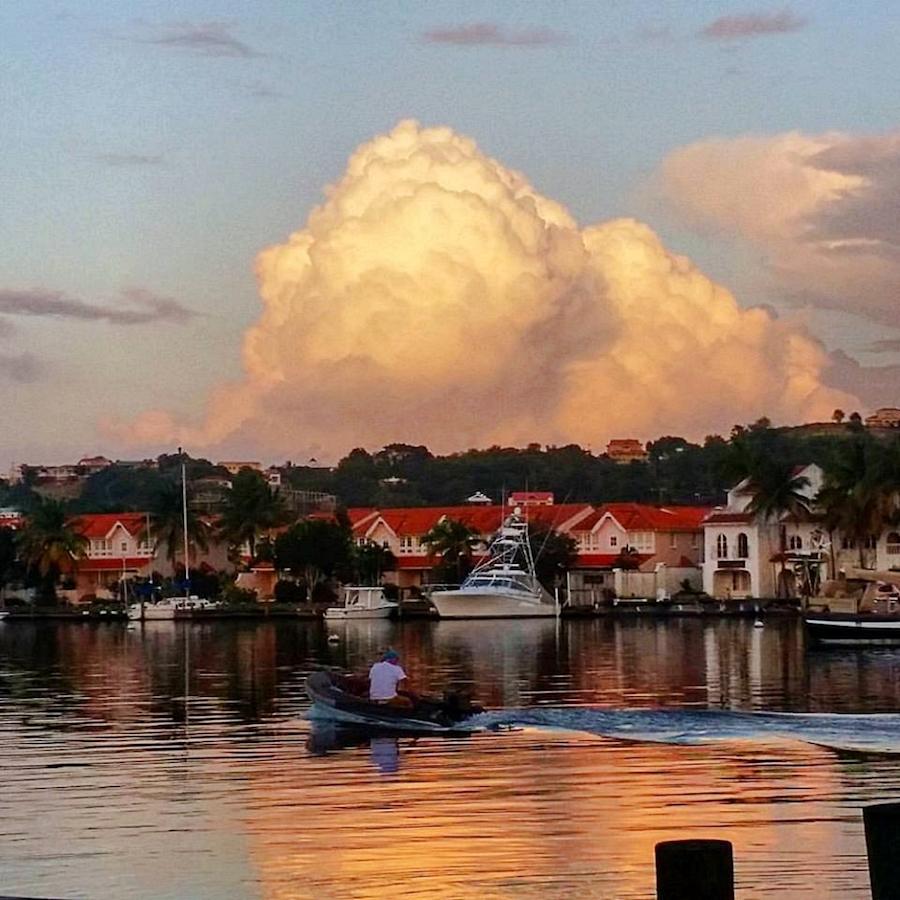 sunset view island mix