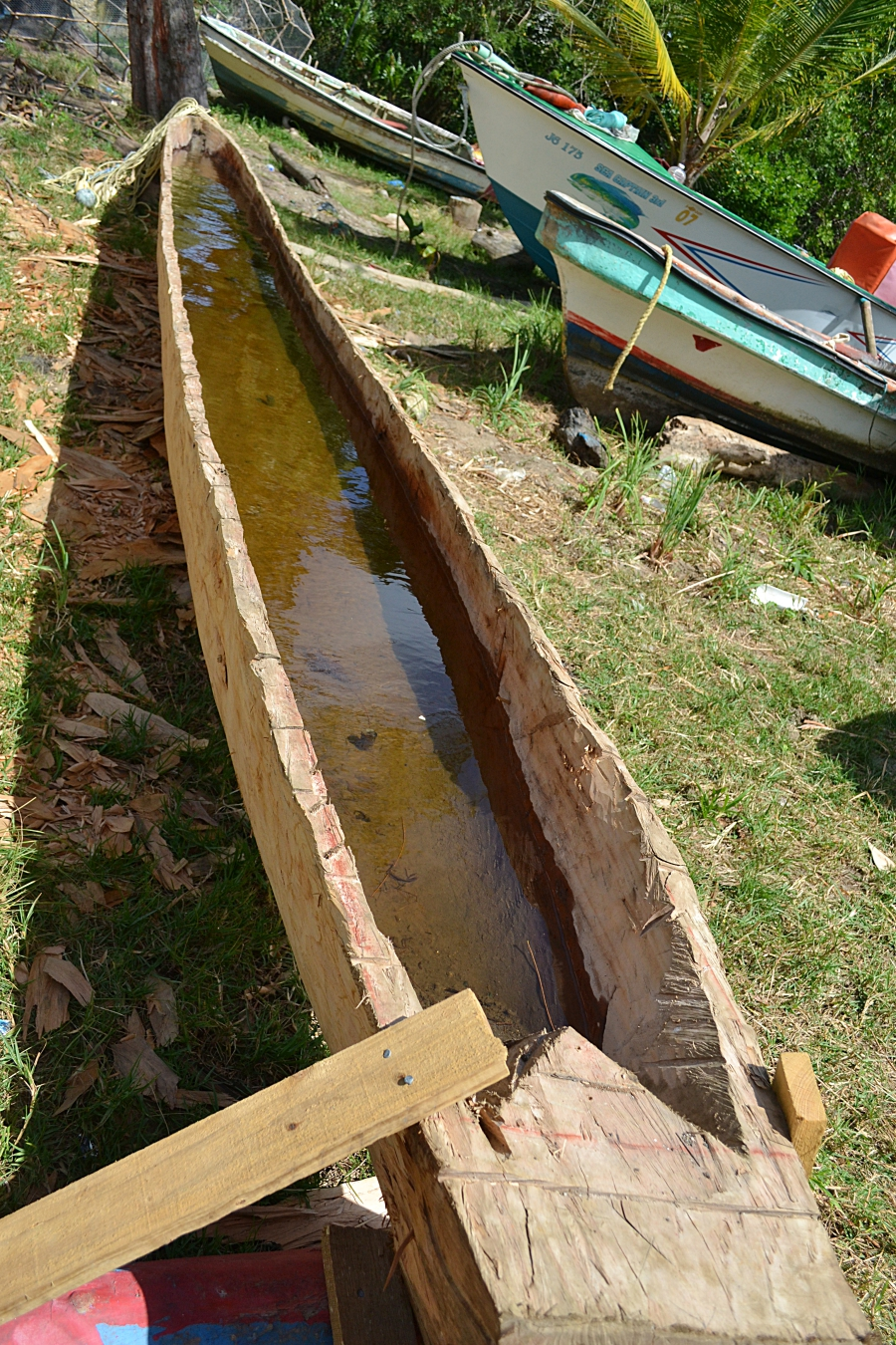 traditional canoe being built in saint lucia