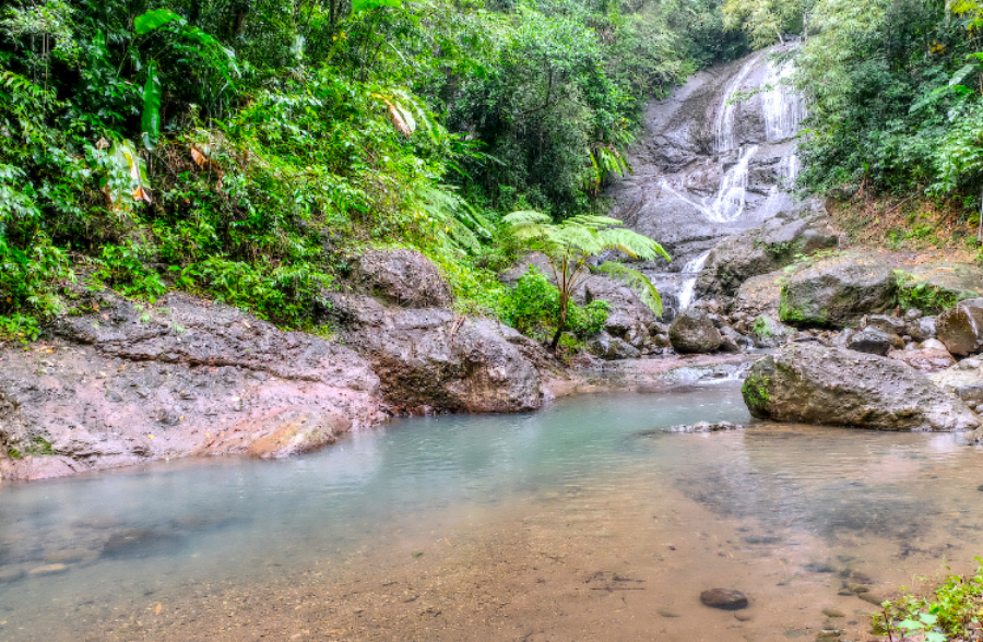 beautiful waterfall anse la raye st lucia, things to do in saint lucia, near marigot bay, near st lucia distillers, rum tour, roseau