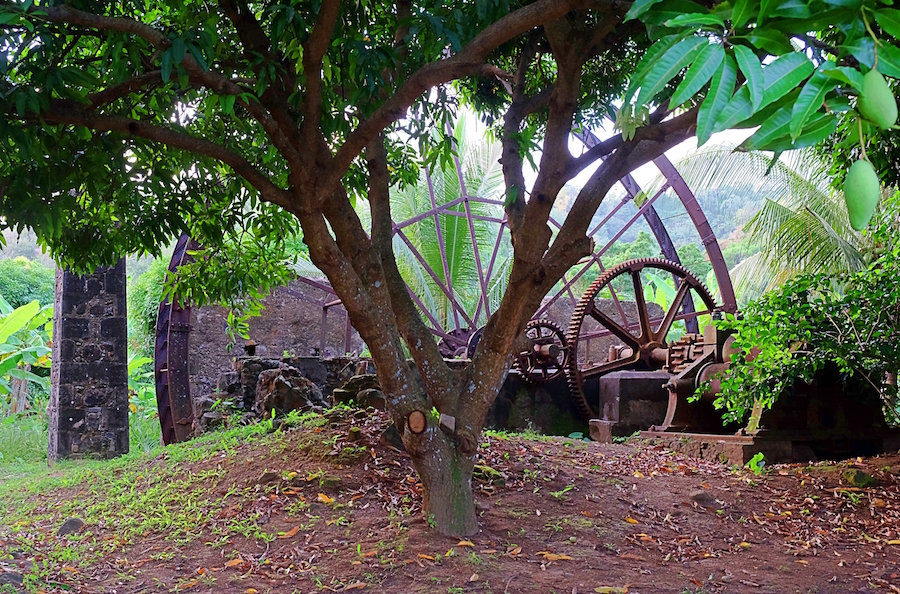 historical plantation water wheel atv farm and eco tours
