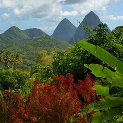 Twice Weekly Instagram Live Series Immerses Consumers in the Beauty, Culture and Local Flavours of Saint Lucia