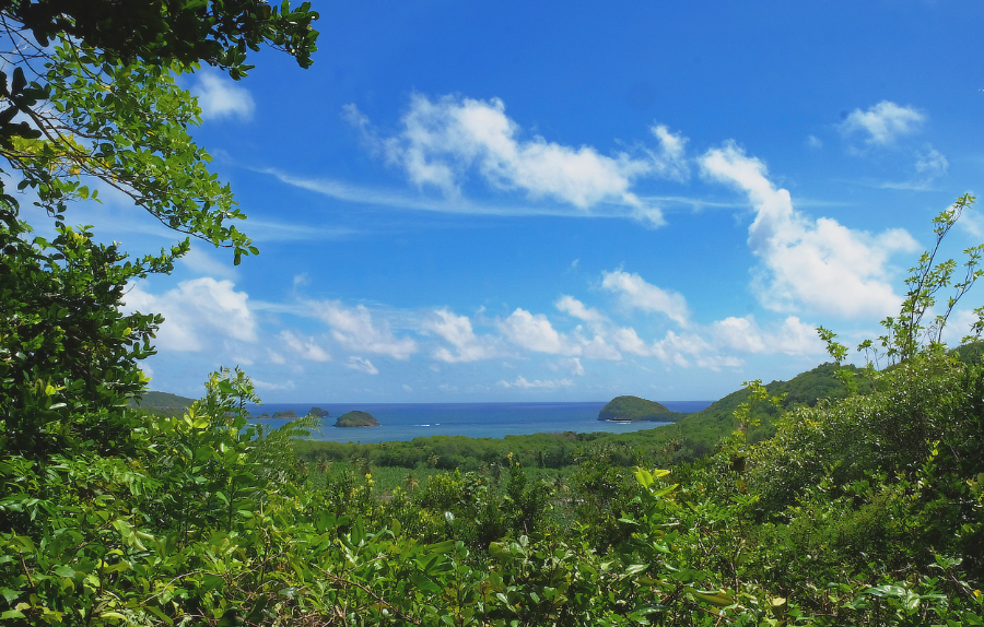mamiku gardens st lucia view of the atlantic ocean from top tamarind hill - east coast praslin island