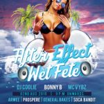 party the night away at AFTER EFFECT WET FETE in Patience, Mon Repos St Lucia