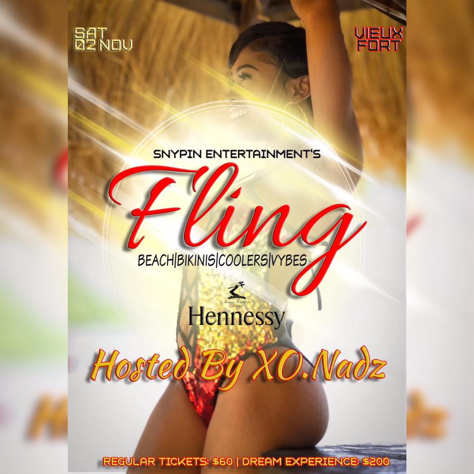 fling at sandy beach - bikini beach party