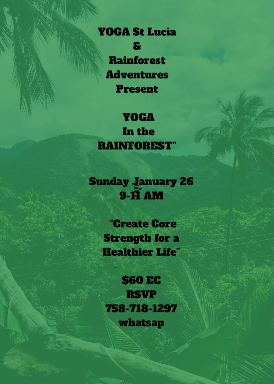 yoga in the rainforest with jill hagar create core strength for a healthier life