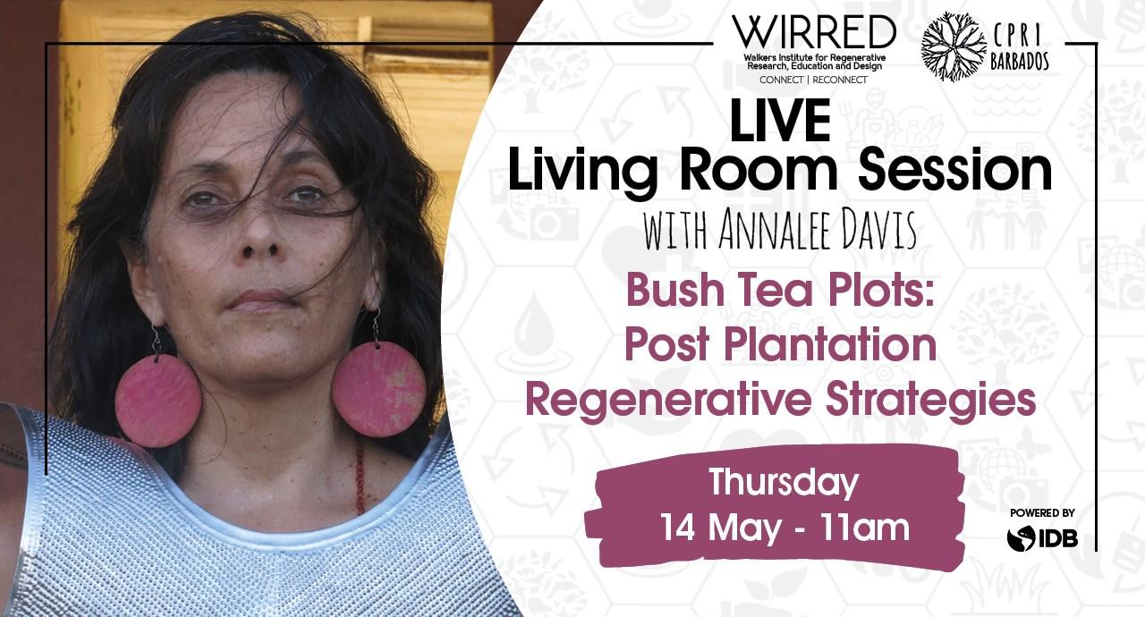 webinar Bush tea plots - post plantation regenerative strategies