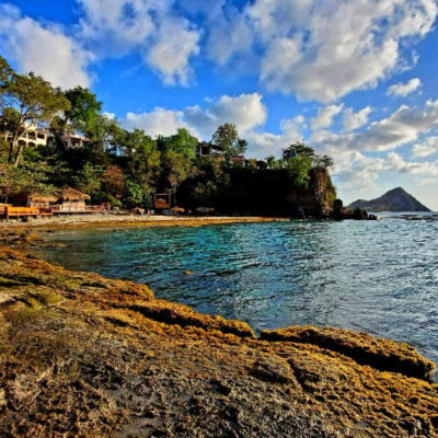 st lucia reopens on June 4th