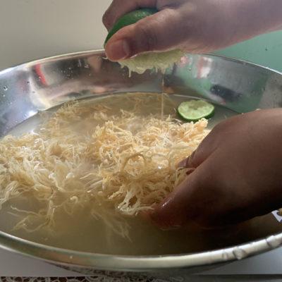 How to prepare Raw SeaMoss – No Heat! Gelatin alternative